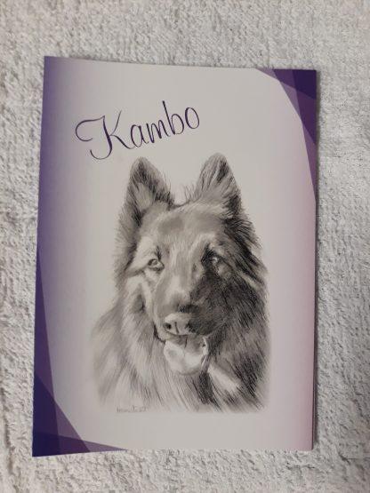 Kambo sketch on A6 sized notelet