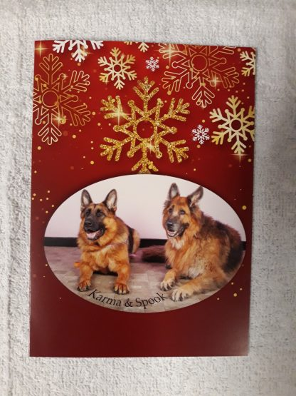 Karma and Spook photo design Christmas card