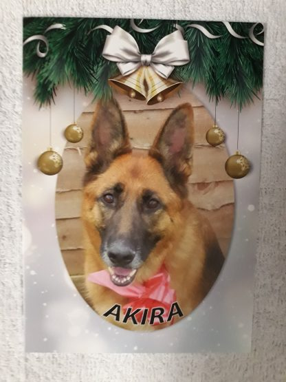 Akira photo Christmas card design.