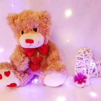 Love heart teddy
