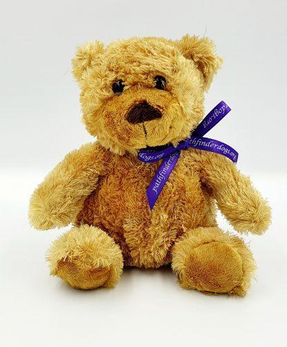Small Tan Bear
